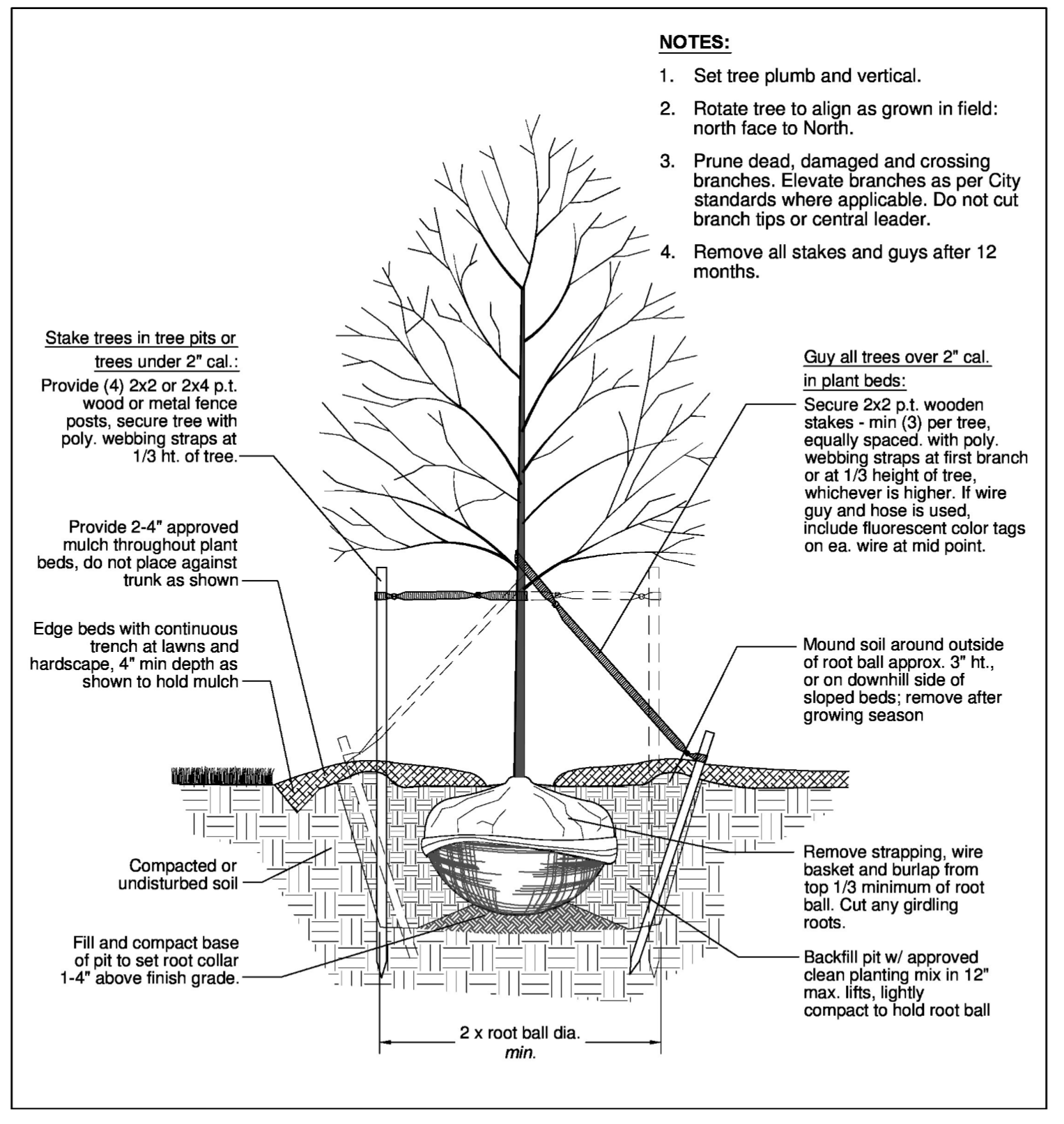SECTION 40   LANDSCAPE, TREE AND BUFFER SUBMITTAL PLANS AND ...
